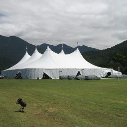 alpine tents durban