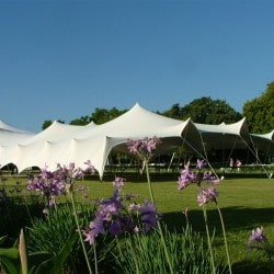 white stretch tents in durban